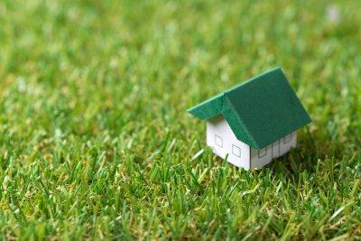 Tipp: Die richtige Rasenpflege im ganzen Jahr: