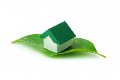 Tipps: Dachbegrünung :